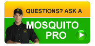 mosquito questions and answers